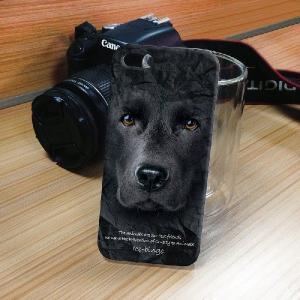 iPhone 5S/5 iPhone SE アニマルフェイス ラブラドールレトリバー 犬 ハードケース スマホカバー PC ポリカーボネート|orcdmepro