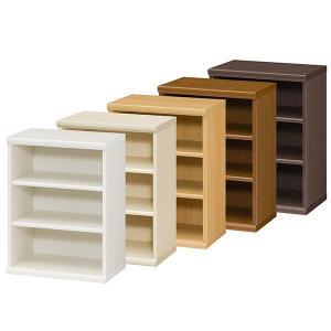 本棚 書棚 飾り棚 整理棚 レディメイドラック 幅44.2 奥行31 高さ60cm|ordershunostyle
