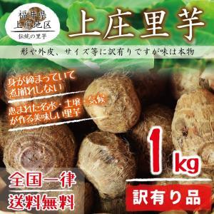 上庄里芋 訳有り(形がいびつ・外皮に傷・サイズが小さい等) 1kg 送料無料 福井県産