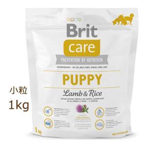 ブリット ケア brit ラム&ライス パピー ドッグフード 1kg|organic-eins