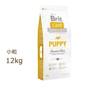 ブリット ケア brit ラム&ライス パピー ドッグフード 12kg 賞味期限2022年1月8日|organic-eins