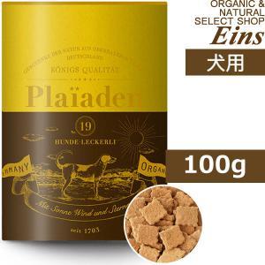 プレイアーデン ごちそうトリーツ 焼きたてチーズ 約100g 犬用おやつ plaiaden 賞味期限...