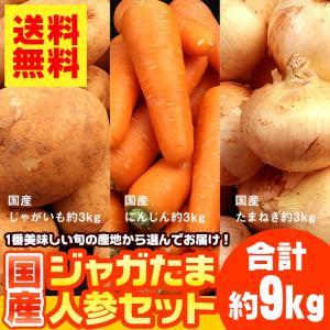 送料無料 生活応援 国産 ジャガイモ 玉ねぎ 人参 合計9k...