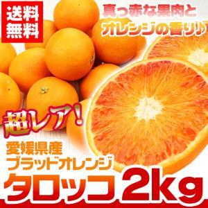 ブラッドオレンジ タロッコ 約2kg