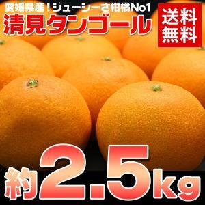 送料無料 愛媛 清見タンゴール約2.5kg みかん オレンジ...