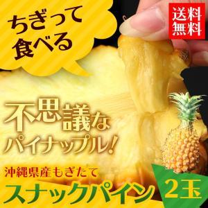 送料無料 沖縄県産スナックパイン2玉 パイナップル(gn)