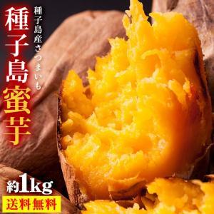 送料無料 鹿児島県 種子島産 蜜芋 約1kg 安納芋 原種 ...