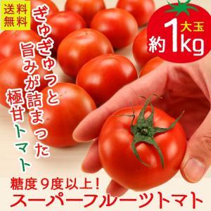 トマト 茨城県産 スーパーフルーツトマト 約1kg 糖度9以...
