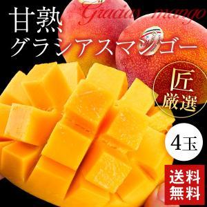 甘熟アップルマンゴー