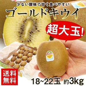果物 キウイ 詰め合わせ ギフト ギフトランキング 送料無料 超特大 ゴールドキウイ 約3kg キウイフルーツ 大玉 kiwi フルーツ 旬(gc)