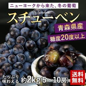 送料無料 フルーツ ぶどう 青森県産 スチューベン 約2kg...