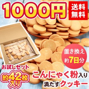クッキー お試し スイーツ 送料無料 1000円ぽっきり こ...