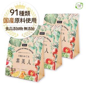 純国産ボタニカルプロテイン 大地のめぐみ素美人 750g 黒糖抹茶味 女性のための美容専門 ソイ タンパク質 美容成分配合 送料無料|organickitchen