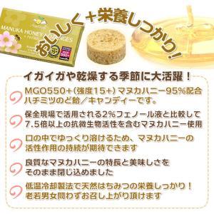 予約【12月中旬入荷】マヌカロゼンジ 12箱セ...の詳細画像5