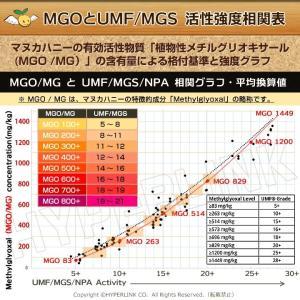マヌカハニー MGO200+ Angelbean ニュージーランドMPI認証 生はちみつ [500g]|organicnoni|06