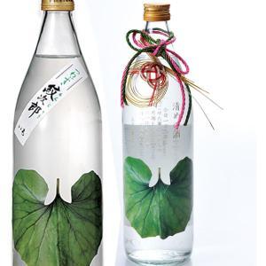 誕生日プレゼント 男性 女性 退職祝 卒業祝い 酒 さつま無双 つわぶき紋次郎 薩摩焼酎 900ml|original