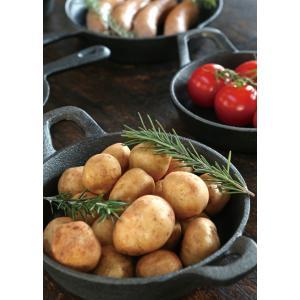 GLUTTON ダルトン グラットン オーバルパン  Sサイズ おしゃれ 鉄鍋 フライパン|oriji|04