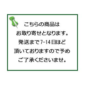 カネボウ ケイト シークレットスキンメイカーゼロ(リキッド)00/ゆうメール限定送料無料|orion-ph|04
