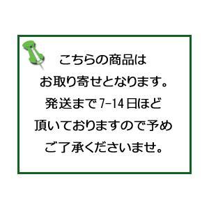 熱さまひんやり やわらかアイス枕/宅配便限定|orion-ph|02