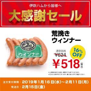 大特価 荒挽ウインナー 6本入り セール品 伊吹ハム 鹿児島産 国産肉使用|orite