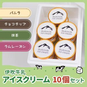 カップアイス アイスクリームセット 10個入り バニラ チョコチップ 抹茶 ラムレーズン 産地直送  御歳暮 御中元 ギフト 簡易熨斗対応 伊吹牛乳|orite
