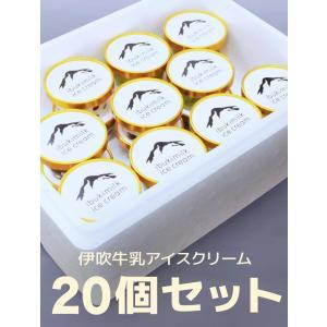 送料無料 御中元 伊吹牛乳のアイスクリームセット 20個入り (20個×4種類入) お中元 お取り寄せ ギフト  滋賀県 特産品|orite