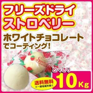 個包装チョコレート フリーズドライストロベリーチョコ  ホワイトチョコレート 10kg (1c/s)...