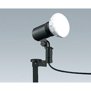 遠藤照明+LEDスポットライト+スパイクタイプ+色ダークグレー ERS4981H