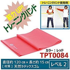サクライ貿易(SAKURAI) Promark(プロマーク) 野球 トレーニング バンド レベル2 ...