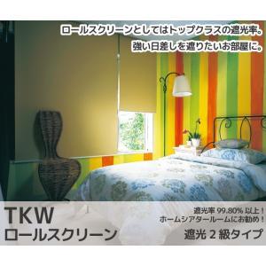 ロールスクリーン 遮光 2級  30〜60×丈30〜90cm TKW|orsun|02