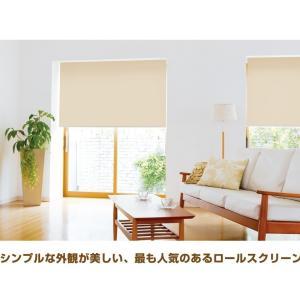 ロールスクリーン 遮光 2級  30〜60×丈30〜90cm TKW|orsun|03