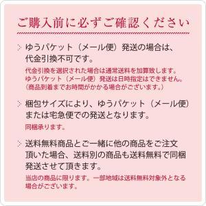 手ぬぐい てぬぐい 手拭い 日本製 トランパラン タペストリー ポイント消化 送料無料 oruta 15
