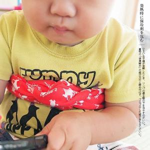 手ぬぐい てぬぐい 手拭い 日本製 トランパラン タペストリー ポイント消化 送料無料 oruta 08
