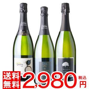 [送料無料](北海道・沖縄対象外)シャンパン製法♪スペイン カバ スパークリング 3本セット [金賞受賞][ワインセット][飲み比べ][カヴァ]|osakeichibajp