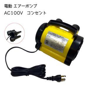 電動エアポンプ エアーポンプ 100V コンセント用 空気入れ 排気 吸気 300L 1分