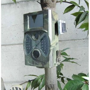 サイトロン(SIGHTRON) 赤外線無人撮影カメラ トレイルカメラ 日本語対応版 STR300|osawamarine