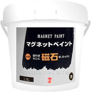 ターナー色彩 マグネットペイント 1.5L (1500ml)...