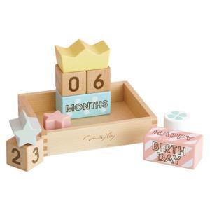 エド・インター Memory Biscuits メモリービスケット[1歳〜][Ed.Inter/エドインター/木のおもちゃ/出産祝い][送料無料]|osharecafe