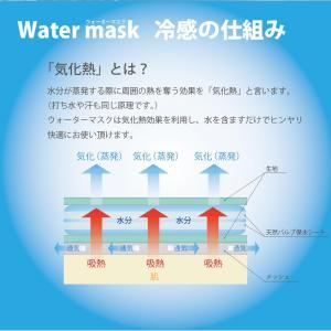 熱中症対策!ウォーターマスク さらさらメッシュ 2枚入り 水でヒンヤリ 洗える 布マスク 大人用 子供用 小さめ 日本製 夏用 呼吸がしやすい 父の日 オーシン|osin|04