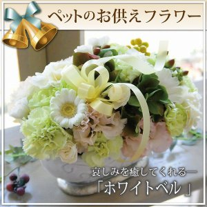 お供え お悔やみ お彼岸 仏花 ペット の お供え花 命日 葬儀 お悔やみ 贈る アレンジメント ホワイトベル|osonaehana