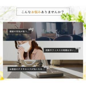 エアークエスト グリーン 業務用エアコン向けフィルター 2枚入り 57cm×57cm 花粉対策|osoujinoyakata|04