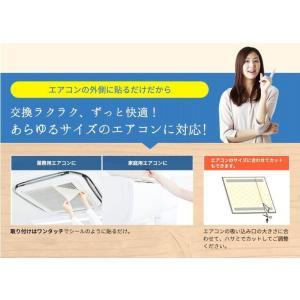 エアークエスト グリーン 業務用エアコン向けフィルター 2枚入り 57cm×57cm 花粉対策|osoujinoyakata|05