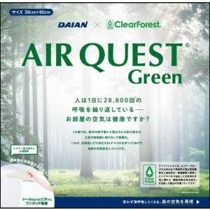 エアークエスト グリーン 家庭用エアコン向けフィルター 2枚入り 38cm×80cm 花粉対策 osoujinoyakata 02