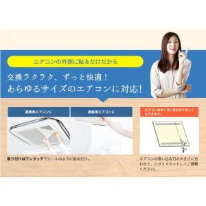 エアークエスト グリーン 家庭用エアコン向けフィルター 2枚入り 38cm×80cm 花粉対策 osoujinoyakata 05