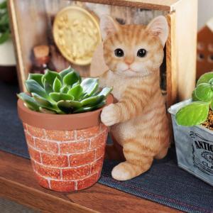 【取り寄せ品の為お届けに約1週間】  プランターを支えている姿が可愛らしい猫がそっと寄り添い、癒して...