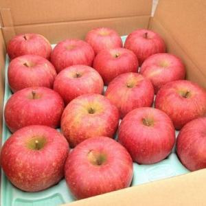 しのぶの里のおいしいリンゴ 家庭用訳ありリンゴ 5kg|otakajuen|02