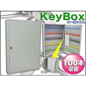 キーボックス 100本収容 壁掛け 管理シート付 防犯対策 オフィス 鍵/ ###キーボックスTS100☆###|otakaratuuhann-sp