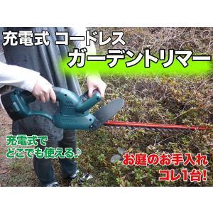 充電式コードレスガーデントリマー 持ち運び便利! ###庭トリマーY-DN-10☆###|otakaratuuhann-sp