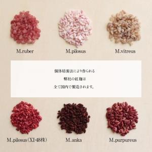 紅麹丸粒 11(ジュウイチ)GABA(100g)|otamaya2002|09