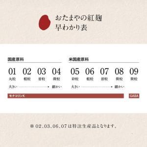 紅麹丸粒 11(ジュウイチ)GABA(100g)|otamaya2002|17